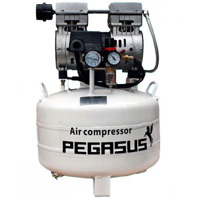 Máy nén khí không dầu giảm âm Pegasus TM-OFF550-40L