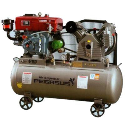 Máy nén khí chạy bằng dầu Diesel Pegasus TM-W-1.6/12.5-500L