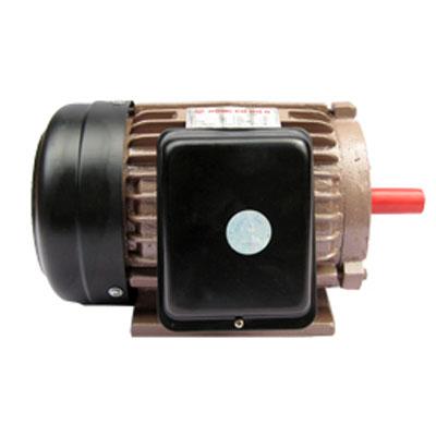 Động cơ điện Tiến Đạt 2HP KN-2