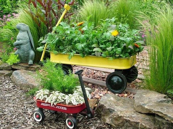 Xe đẩy hàng cũ được tận dụng trồng cây hiệu quả.