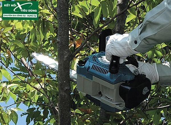 Trọn bộ dụng cụ làm vườn và chăm sóc cây cảnh của Makita